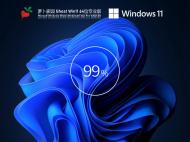 萝卜家园Win11 64位专业激活版 V2021.08