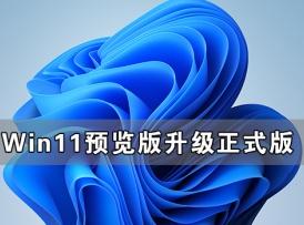 Win11预览版怎么升级正式版 Win11预览版可以直升正式版吗